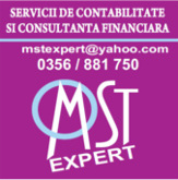 Accounting firm Timisoara